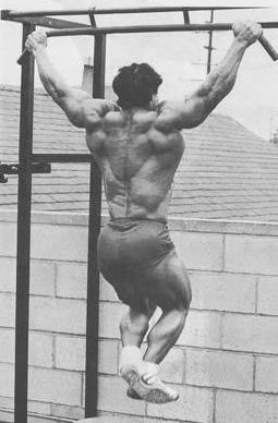 Franco Columbu wide grip pull ups.