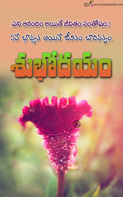 Tremendous Good Morning Quotes In Telugu Self Motivational Sayings With Hd Personalised Birthday Cards Bromeletsinfo