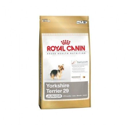 Ya Puedes Comprar En Mascotamanias Royal Canin Yorkshire Terrier