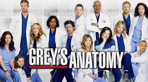 منتجو مسلسلات أميركية يتبرعون بمعد اتهم الطبية لمكافحة كورونا Greys Anatomy Characters Watch Greys Anatomy Greys Anatomy Season