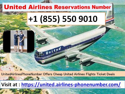 Immediate Airline Reservation At United Airlines Phone Number United Airlines Airlines The Unit