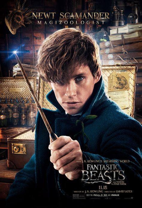 Newt Scamander Fantastic Beasts And Where To Find Them Animais