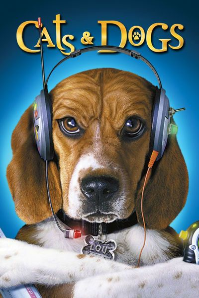 Cats Dogs 2001 Dog Movies Dog Cat Movies