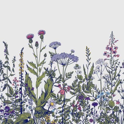 "Bungalow Rose Pierpoint Removable Field Prairie Flowers 6.25' L x 75"" W Wall Mural | Wayfair"