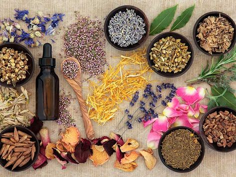 The A-Z of herbal remedies