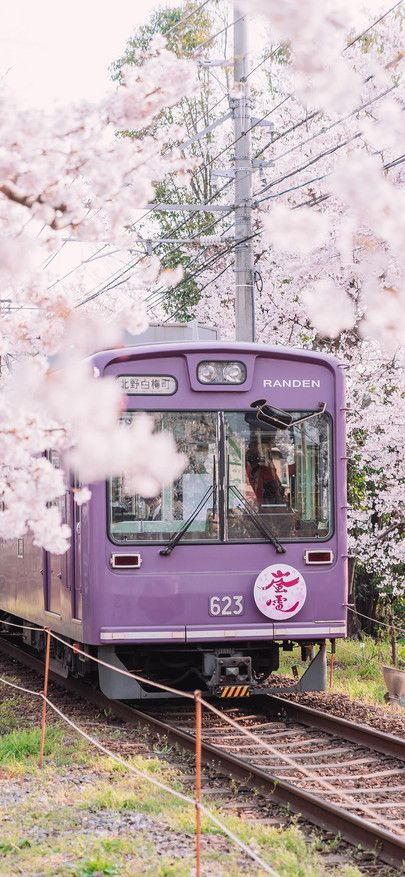 Train Cherry Blossom Japan Train Driving Spring Wallpapers For Iphone11 Iphone11 Pro Iphone 11 Pro Max In 2020 Travel Aesthetic Japan Travel Japan Photography