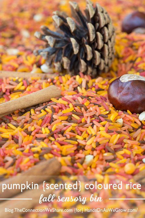 Pumpkin scented rice sensory bin for fall