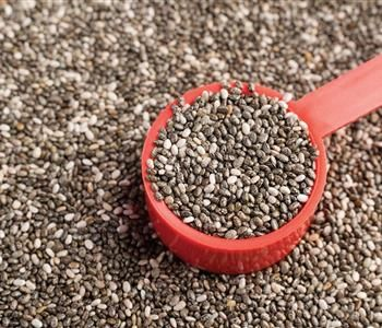 فوائد بذور الشيا المذهلة التي لا يعرفها أحد Chia Seeds Diet And Nutrition Chia