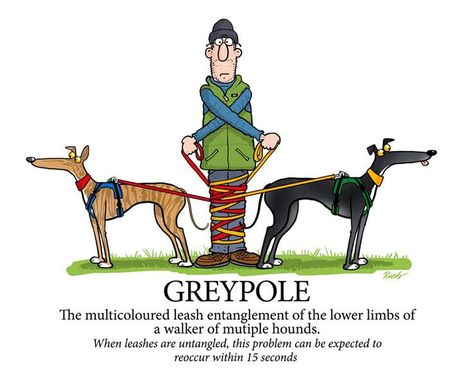 Greyhound dump2 Richard Skipworth