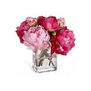 Hot Pink Flowers / Square Vase Peonies. Like this!  sc 1 st  Pinterest & Pinterest