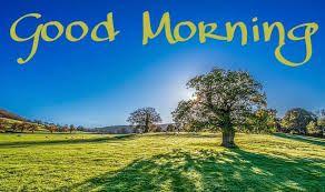 Best Nature Good Morning Whatsapp Dp Pics Hd Download And Share Good Morning Images Morning Images Good Morning Photos
