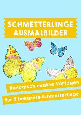 Bastelvorlagen Schmetterlinge In Naturgetreuer Darstellung Bastelvorlagen Zum Ausdrucken Bastelvorlage Schmetterling Bastelvorlagen