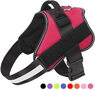 Bolux Dog Harness No Pull Reflective Breathable Adjustable Pet