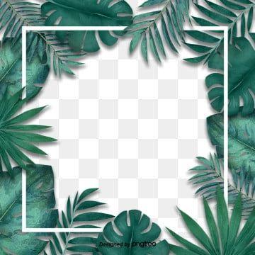 Simple Fresh Tropical Palm Leaf Border Originality Leaf Palm Leaf Border Png Transparent Clipart Image And Psd File For Free Download Cvetochnye Bordyury Tropicheskie Cvety Tropicheskie Listya
