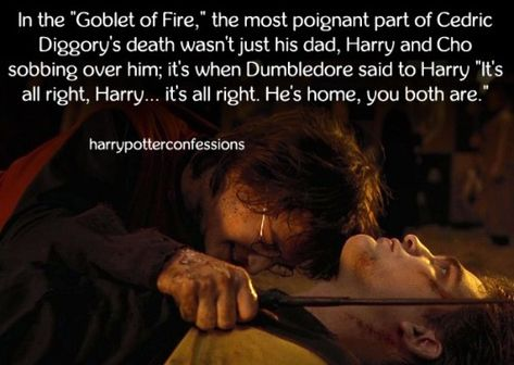 In The Goblet Of Fire The Most Poignant Part Of Harry Potter Goblet Harry Potter Universal Harry Potter Collection