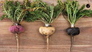 العناية بالبشرة و المكملات الغذائية الفياغرا الطبيعية Maca Maca Root Root Color