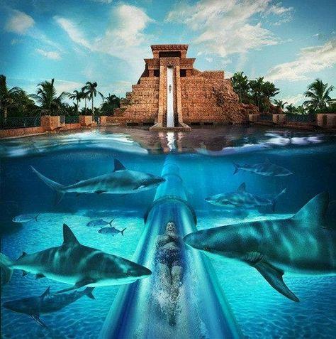 Vodní skluzavka v letovisku Atlantis, Paradise Island, Bahamy ./ Water slide at the Atlantis Resort, Paradise Island, Bahamas