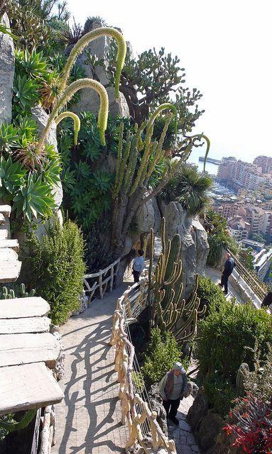 Jardin Exotique Monaco Ville Monaco Ferien Reise