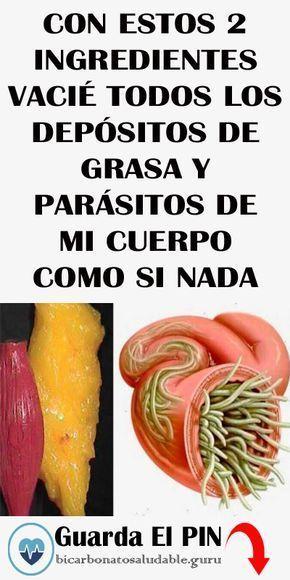 los parásitos comen grasa