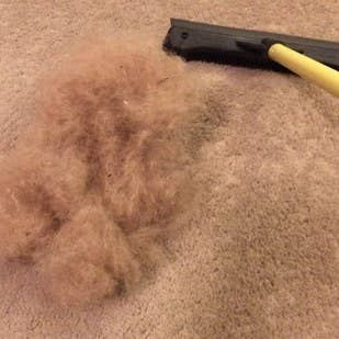 9 Life Saving Hacks For Removing Pet Hair From Everywhere In 2020 Pet Hair Removal Dog Hair Cleaning Dog Hair Removal