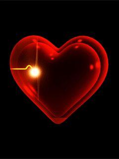 Vive!!!...Siente los latidos de tu corazón y renuévate…