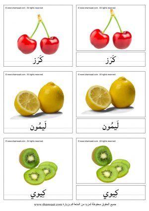 الفواكه بطاقات مونتسوري ثلاث قطع Food Vegetables Tomato