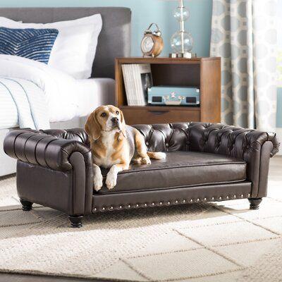 Archie Oscar Cornelia Dog Sofa In 2020 Dog Sofa Dog Sofa Bed Dog Couch