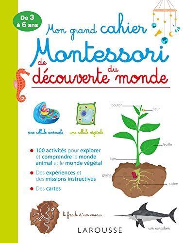 Amazon Fr Mon Grand Cahier Montessori De Decouverte Du Monde Christelle Guyot Livres Decouverte Du Monde Telechargement Montessori