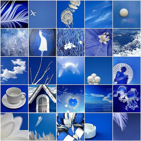 Royal Blue & White Photo Collage by LHDumes,