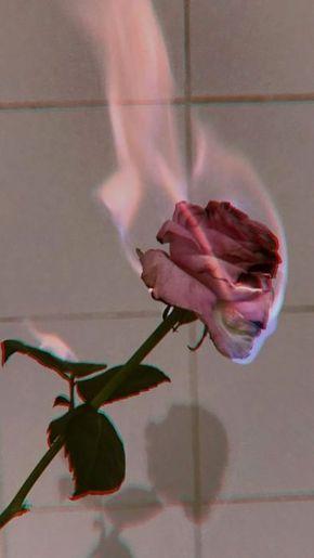 Fondo de pantalla para celular rosa con fuego. fondos de pantalla tumblr