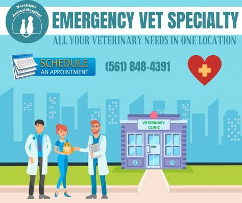 Emergency Animal Hospital Urgent Care Near Boca Raton Fl With Images Emergency Vet Animal Hospital Sick Pets
