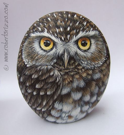 Original Hand Painted Little Owl Rock - Original handgemalte Steinkauz Rock von RobertoRizzoArt auf Etsy - Painted Rocks Owls, Owl Rocks, Painted Rock Animals, Painted Stones, Pebble Painting, Pebble Art, Stone Painting, Stone Crafts, Rock Crafts