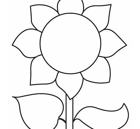 Sunflower Outline Printable. sunflower coloring page