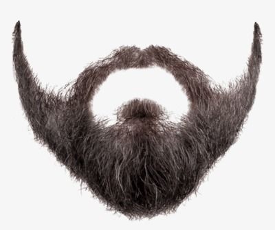 Moustache Png And Clipart Beard Vector Hair Png Beard Images