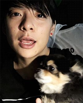 A puppy!   Amber and JackJack   gif