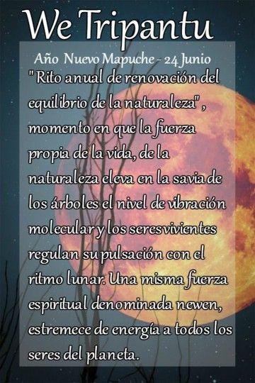 We Tripantu Ano Nuevo Mapuche Cultura Mapuche Carteles