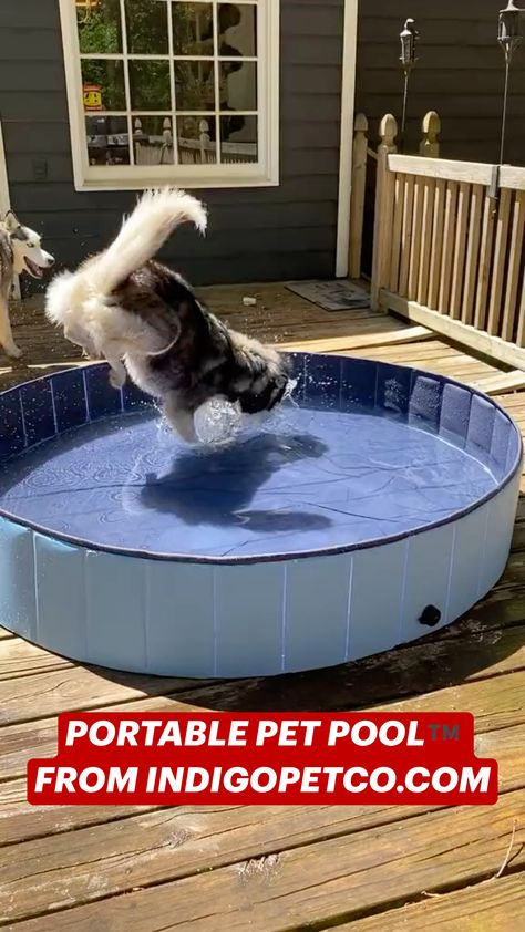 PORTABLE PET POOL™️ FROM INDIGOPETCO.COM