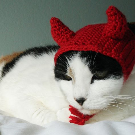 Ravelry: Devil Costume Pet Cat Dog Hat Headband pattern by Lindsay Smith Lila Baby, Devil Costume, Kitty Costume, Pet Costumes, Witch Costumes, Costume Ideas, Cat Accessories, Cat Hat, Dog Sweaters
