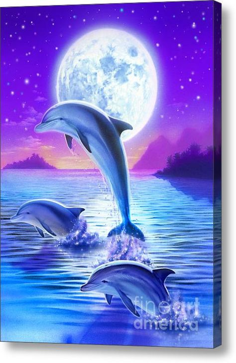 Day of the Dolphin by Robin Koni. Dolphins Acrylic painting.