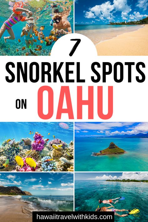 Planning a trip to Oahu, Hawaii and want to find the coolest snorkel spots? Find out where to go all over Oahu to see gorgeous tropical fish and Hawaiian sea turtles! Visit Hawaii, Oahu Hawaii, Hawaii Trips, Kauai, Hawaii Travel Guide, Travel Tips, Travel Ideas, Oahu Vacation, Croatia