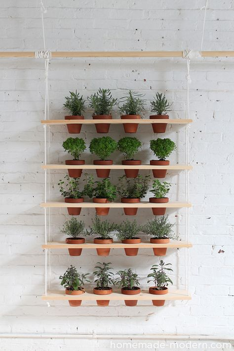 Creative Outdoor Herb Gardens • Ideas and Tutorials! Including from 'homemade modern', this very cool DIY hanging herb garden.