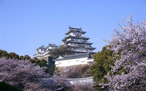 Château de Himeji et fleurs de cerisier-wallpaper printemps Album Fond d'écran aperçu - 10wallpaper.com