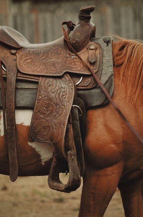 Western Horse Tack, Western Riding, Western Saddles, Western Wall, Cavalo Wallpaper, Foto Cowgirl, Rustic Wallpaper, Baby Wallpaper, Horse Gear