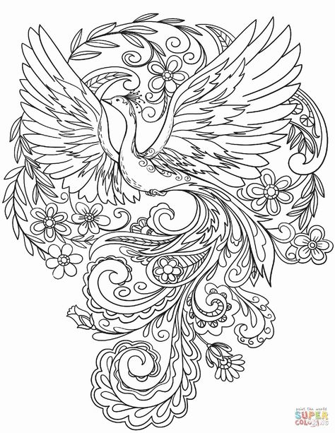 Best Anatomy Drawing Book in 2020   Peacock coloring pages ...
