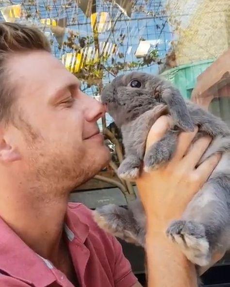 20% OFF BUNNY GIFTS + TREATS > TODAY! #rabbits #bunny #bunnies - #bunnies #Bunny #GIFTS #rabbits #thingstodoin #today #Treats