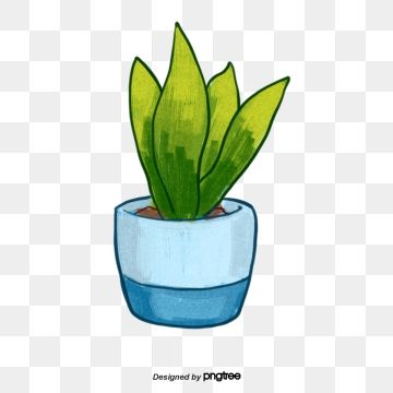 Green Plant Blue Flower Pot Flower Pot Clipart Green Plant Png Transparent Clipart Image And Psd File For Free Download Green Plants Flower Pots Flowering Vines