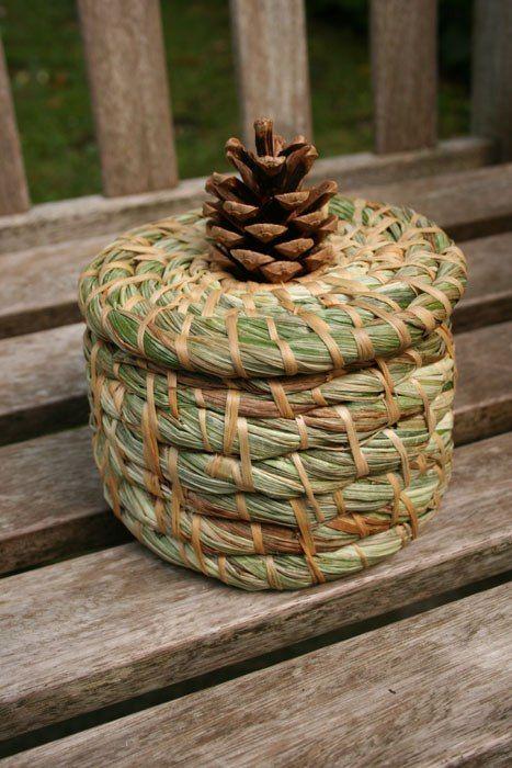 Making a basic coiled basket Rope Basket, Basket Weaving, Pine Needle Crafts, Pine Needle Baskets, Willow Weaving, Newspaper Basket, Pine Needles, Birch Bark, Weaving Art