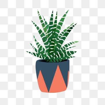 Potted Plant Green Plant Flower Pot Png And Psd Flower Pots Plants Small Potted Plants