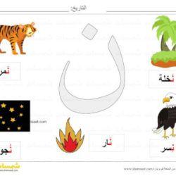 بطاقة عرض ملونة حرف النون صور لكلمات تبدأ بحرف النون شمسات Symbols
