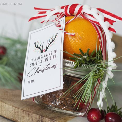 Christmas Stove Top Potpourri + Gift Printable christmas stove top potpourri gift<br> This Christmas Stove Top Potpourri Gift is the perfect way to simplify gift giving this holiday season!